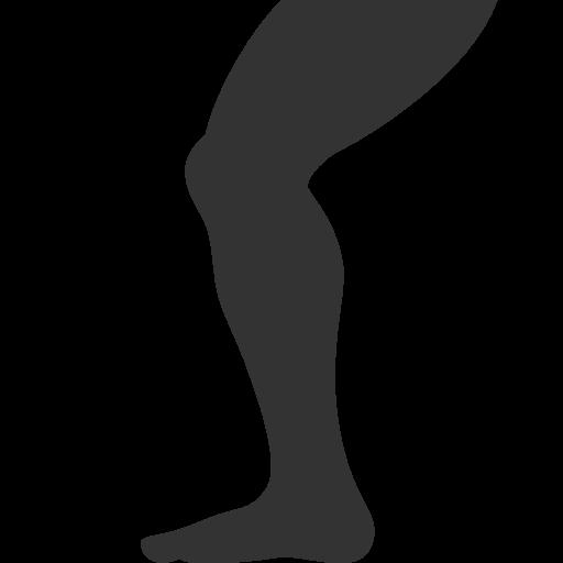 512x512 - PNG Leg