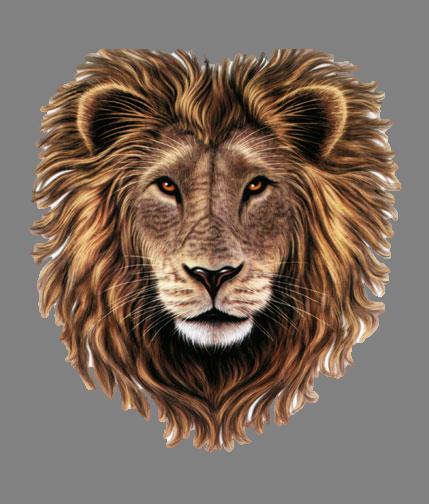 PNG Lion Head Roaring