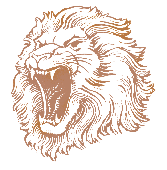 PNG Lion Head Roaring - 61518