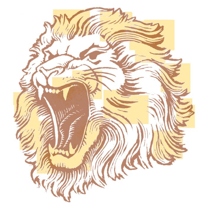 Lion Head PNG Image - PNG Lion Head Roaring