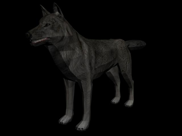 Lobo.png - PNG Lobo