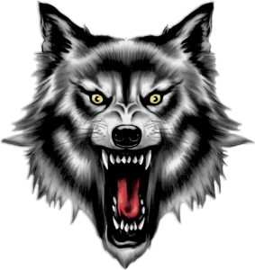 Lobo Ver imagen grande - PNG Lobo
