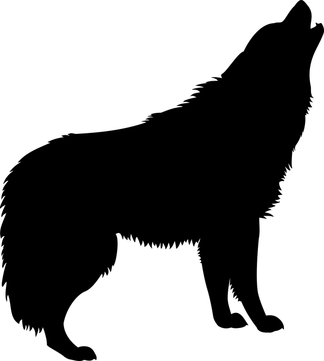 PNG Lobo - 61793