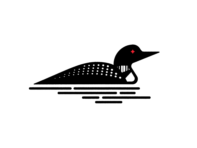 PNG Loon-PlusPNG.com-800 - PNG Loon