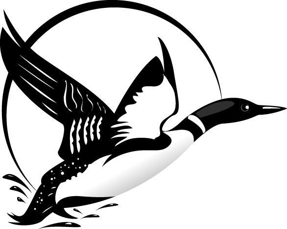 flying loon drawing - Google