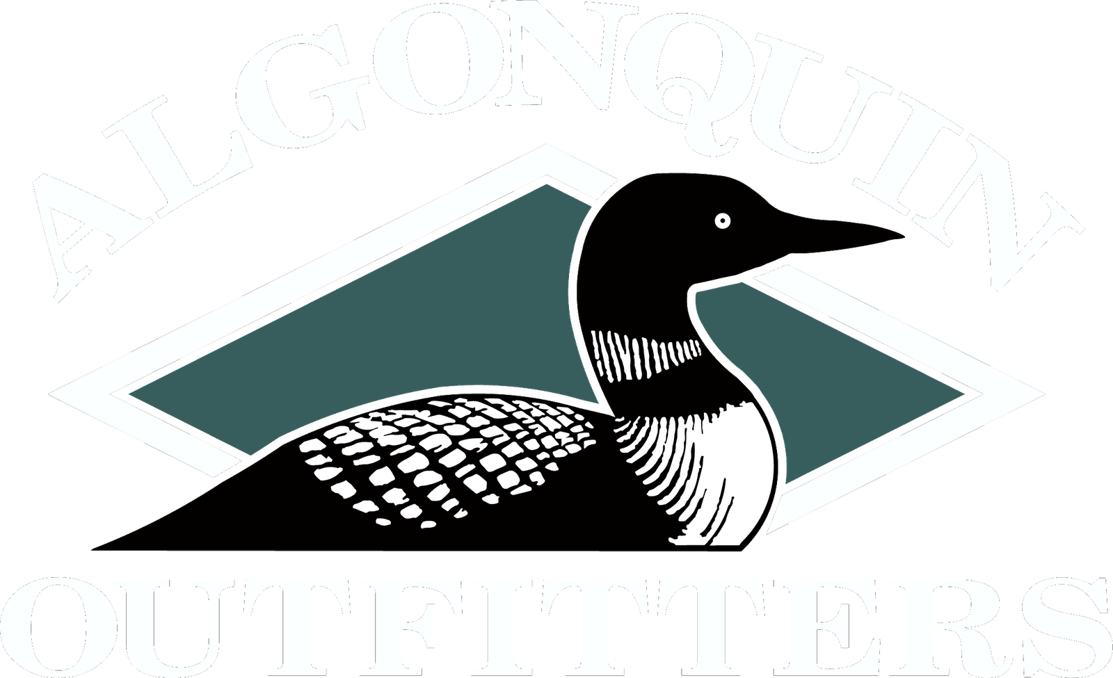 Loon Art Png - PNG Loon