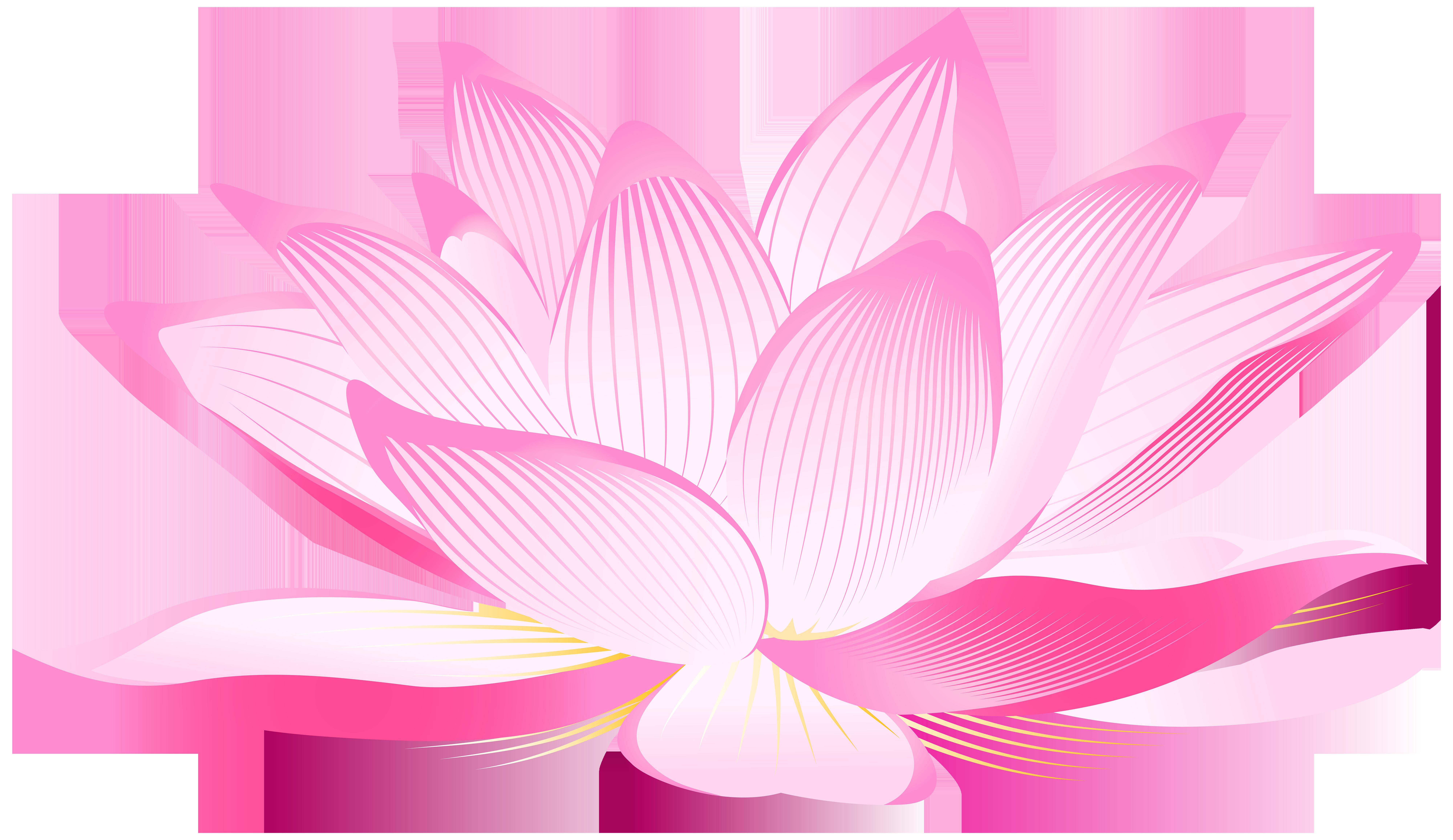 Png Lotus Flower Transparent Lotus Flower Png Images