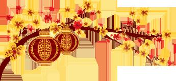 Cành Mai Logo Thegioididong - PNG Mai
