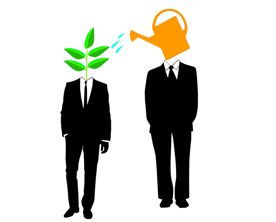 mentor startup mentorship advice funding - PNG Mentor