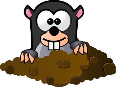 Download pngtransparent PlusPng.com  - PNG Mole