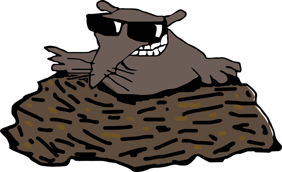 Mole, Molehill, Animal, Fun, Sunglasses - PNG Mole