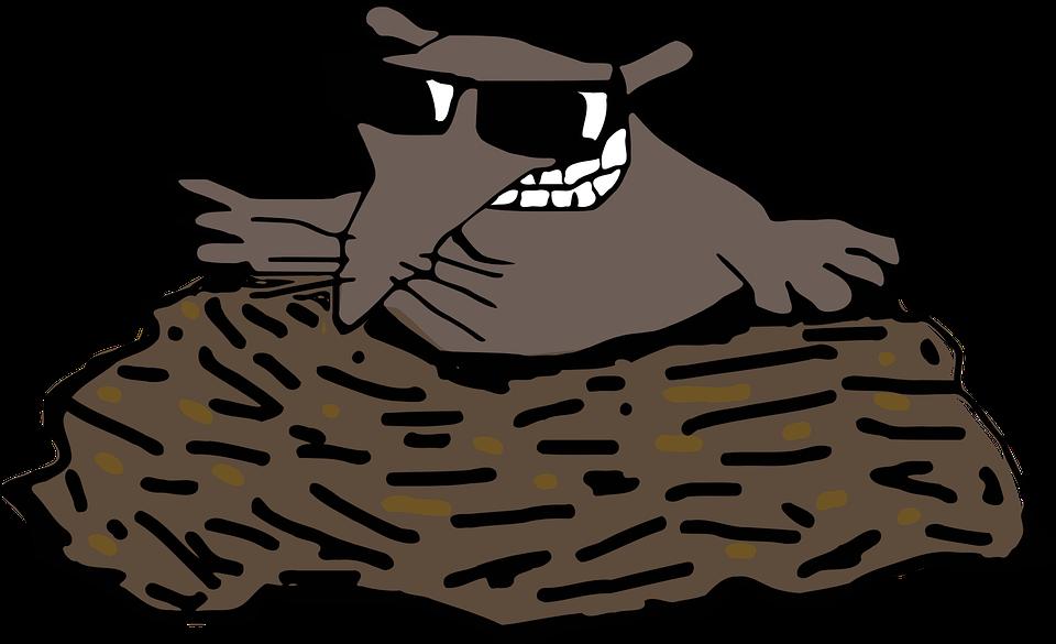 PNG Mole - 79846