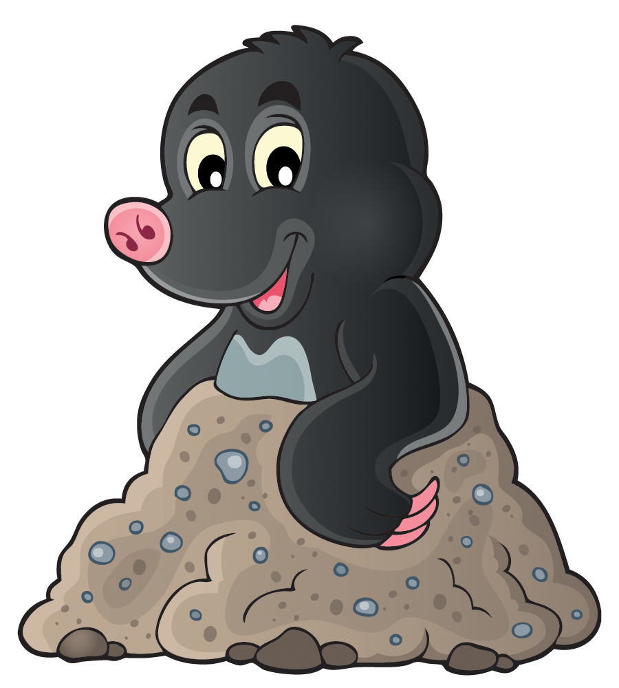 Welcome to Maths Mole - PNG Mole