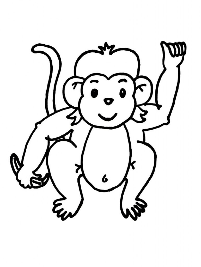 black and white monkey coloring page - PNG Monkey Black And White