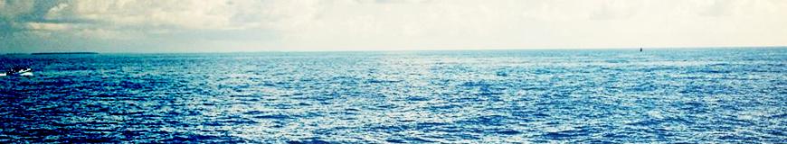 PNG Ocean - 77959