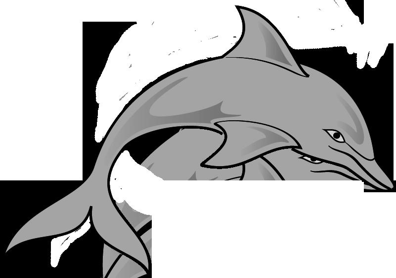 pin Gray clipart ocean animal #2 - PNG Ocean Animals