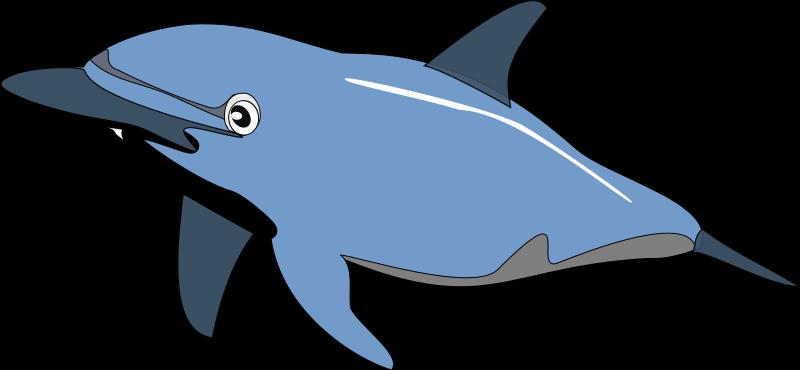 pin Gray clipart ocean animal #4 - PNG Ocean Animals