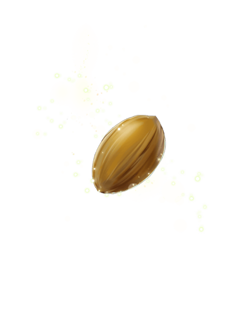 Seed Of The Eternal Tree Transparent.png - PNG Of A Seed