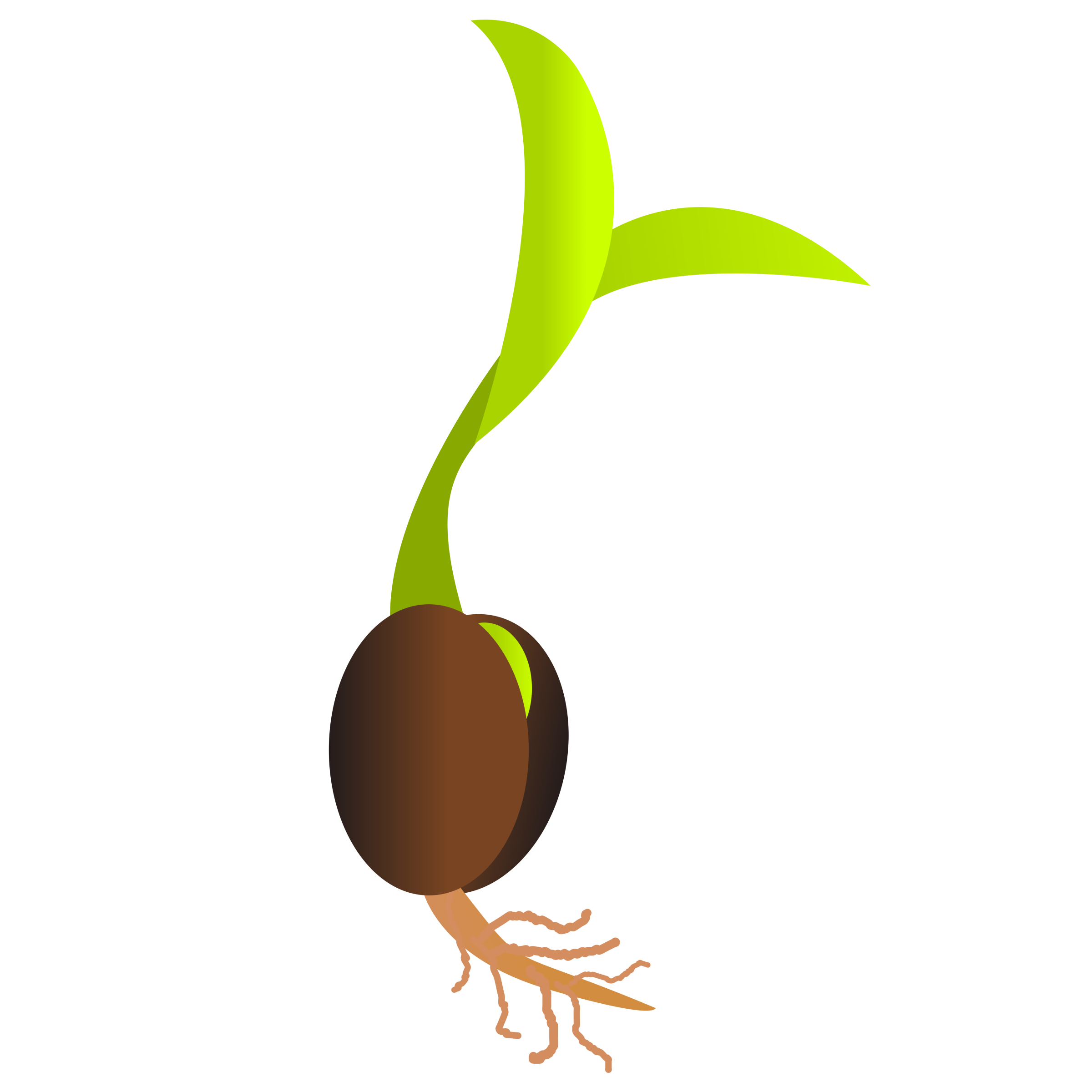 PNG Of A Seed