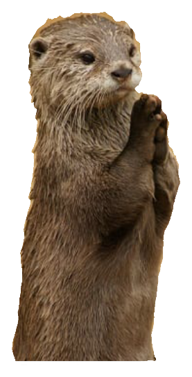 PNG Otter - 72759