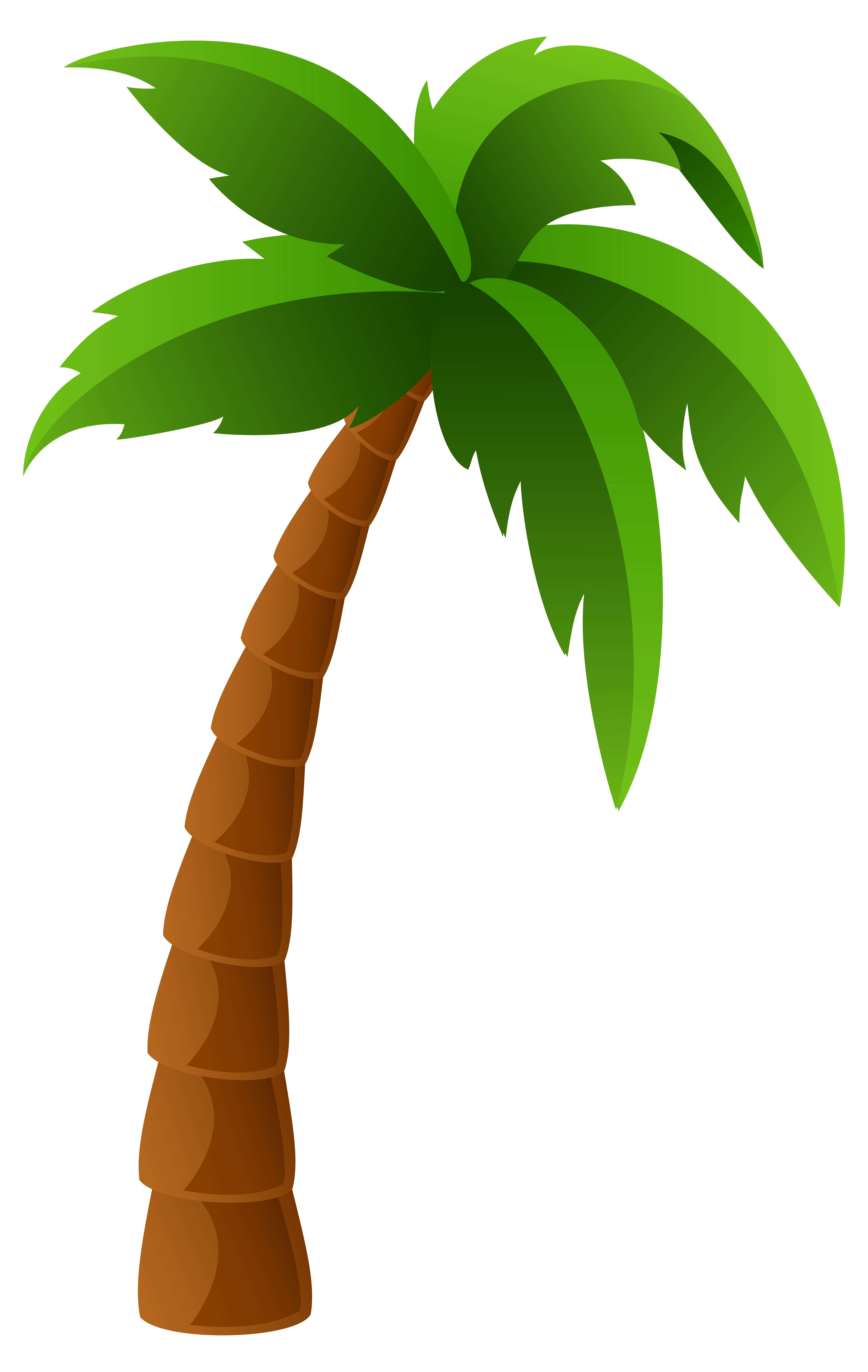 Palm Tree Clip Art 3 - PNG Palm Tree Free