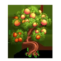 PNG Peach Tree - 164227