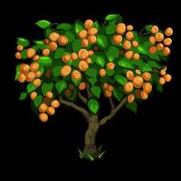 PNG Peach Tree - 164221