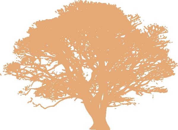 PNG Peach Tree - 164224