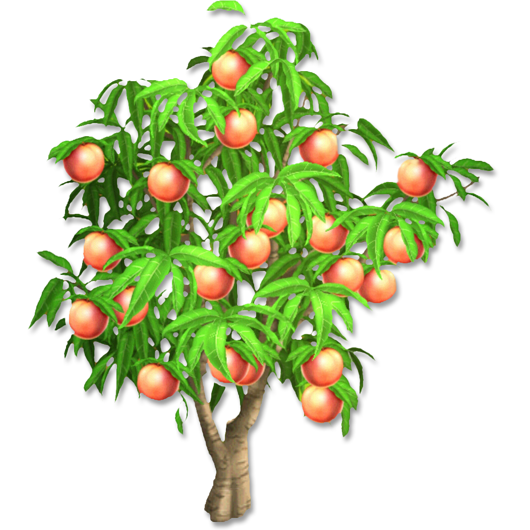 PNG Peach Tree Transparent Peach Tree.PNG Images. | PlusPNG