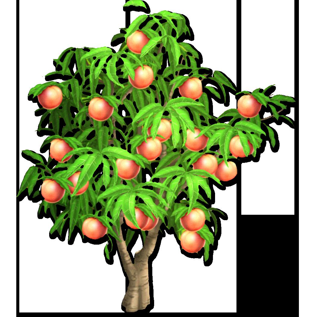 PNG Peach Tree - 164216
