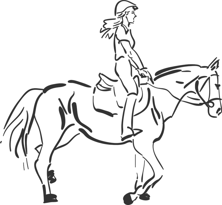 Pferde Zeichnungen
