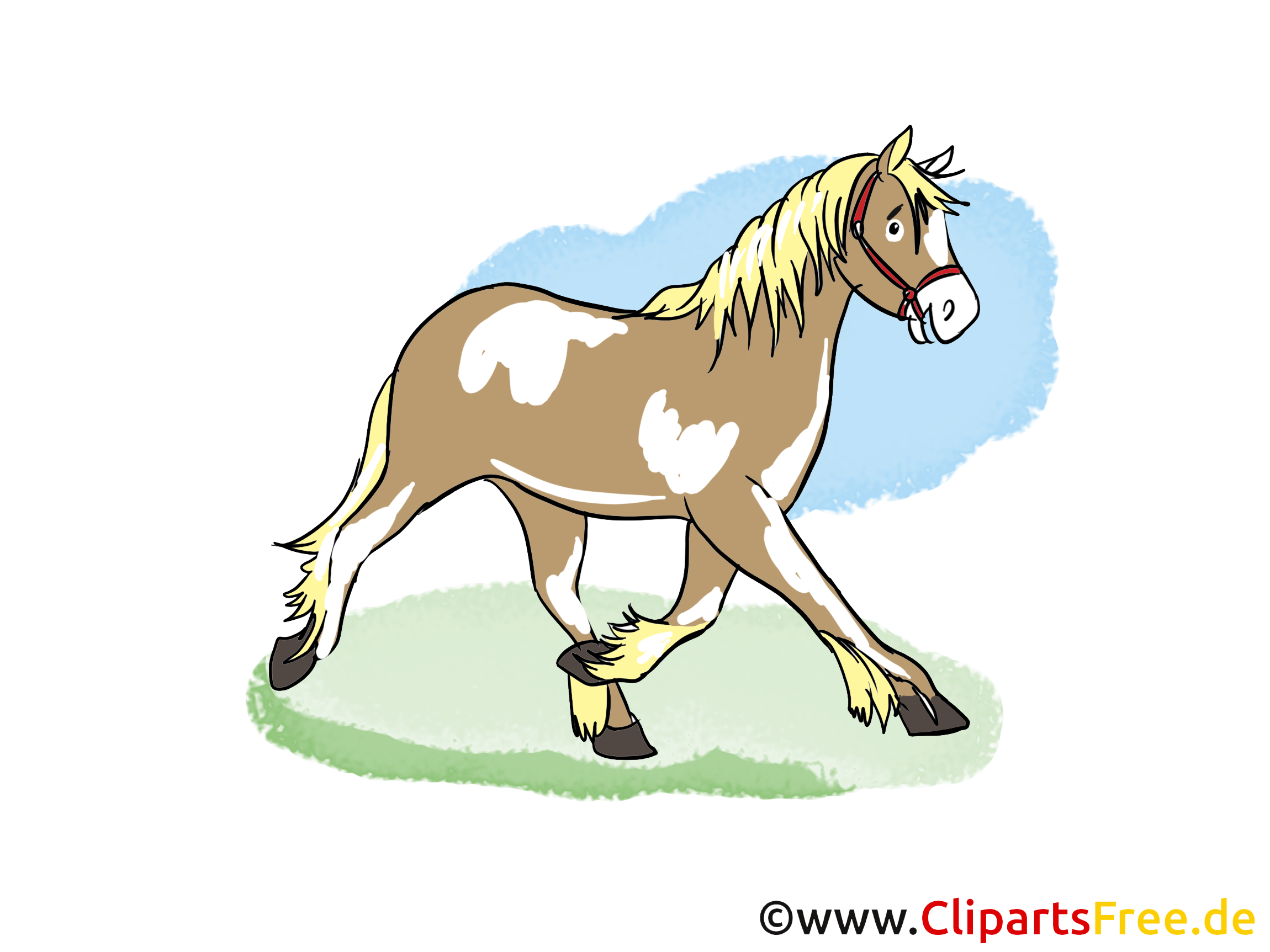Pferd, Tier, Säugetier, Pfer