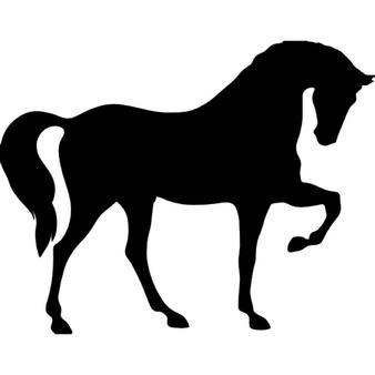 Pferd, das auf drei Pfoten sc
