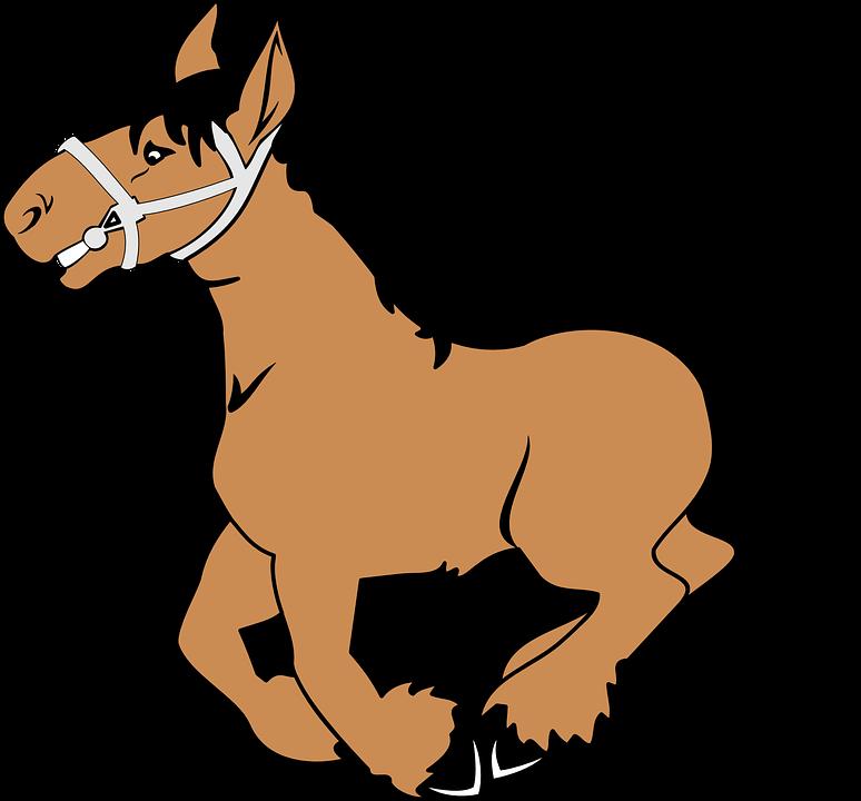 Pferd, Im Galopp, Cartoon, Be