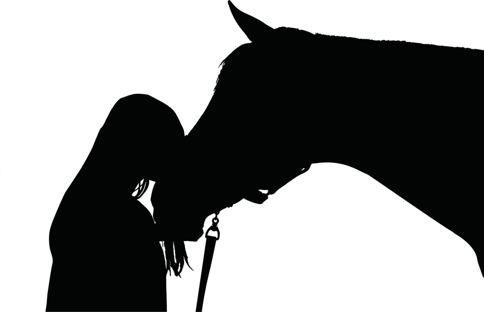 PNG Pferdekopf Kostenlos - 72436