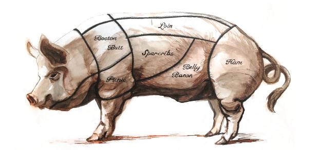 PNG Pig Roast - 76976