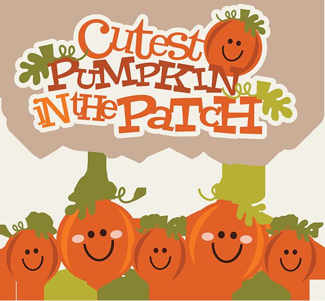 Cutest Pumpkin In The Patch SVG pumpkin clipart cute pumpkin clipart cute  clip art - PNG Pumpkin Patch