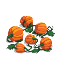 File:Pumpkin Patch.png - PNG Pumpkin Patch