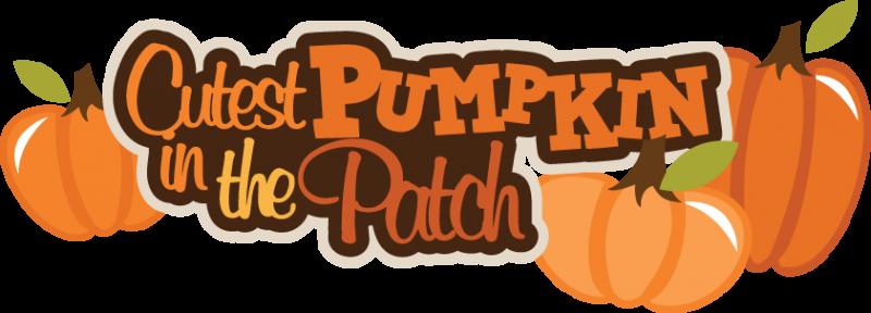 Pumpkin - PNG Pumpkin Patch