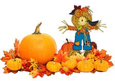 Pumpkin Patch - PNG Pumpkin Patch