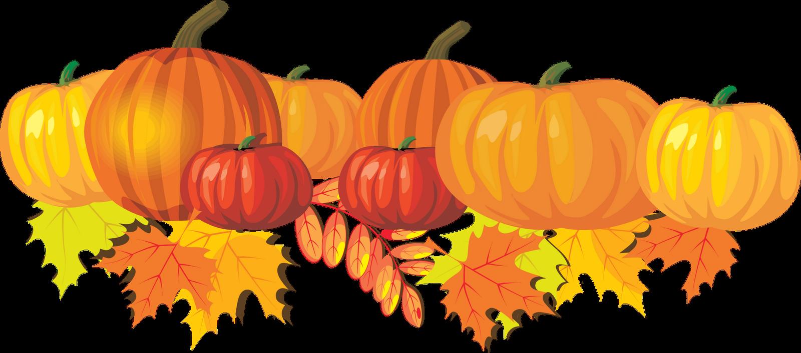 Pumpkin patch clipart 4 - PNG Pumpkin Patch