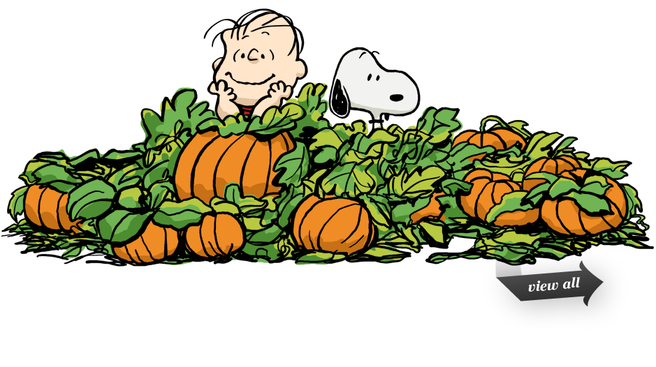 Snoopy pumpkin patch clipart pluspng - PNG Pumpkin Patch