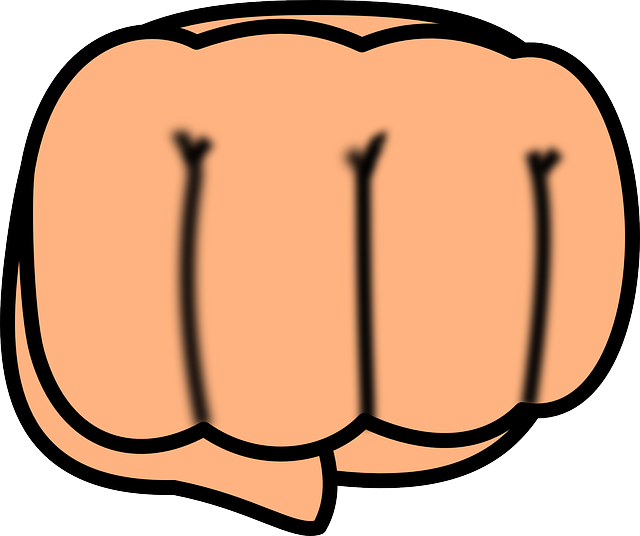 PNG Punching Fist - 76495
