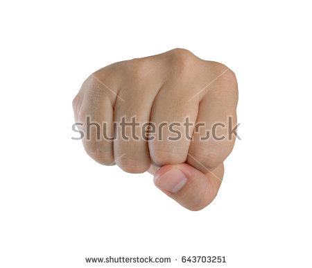 PNG Punching Fist - 76493