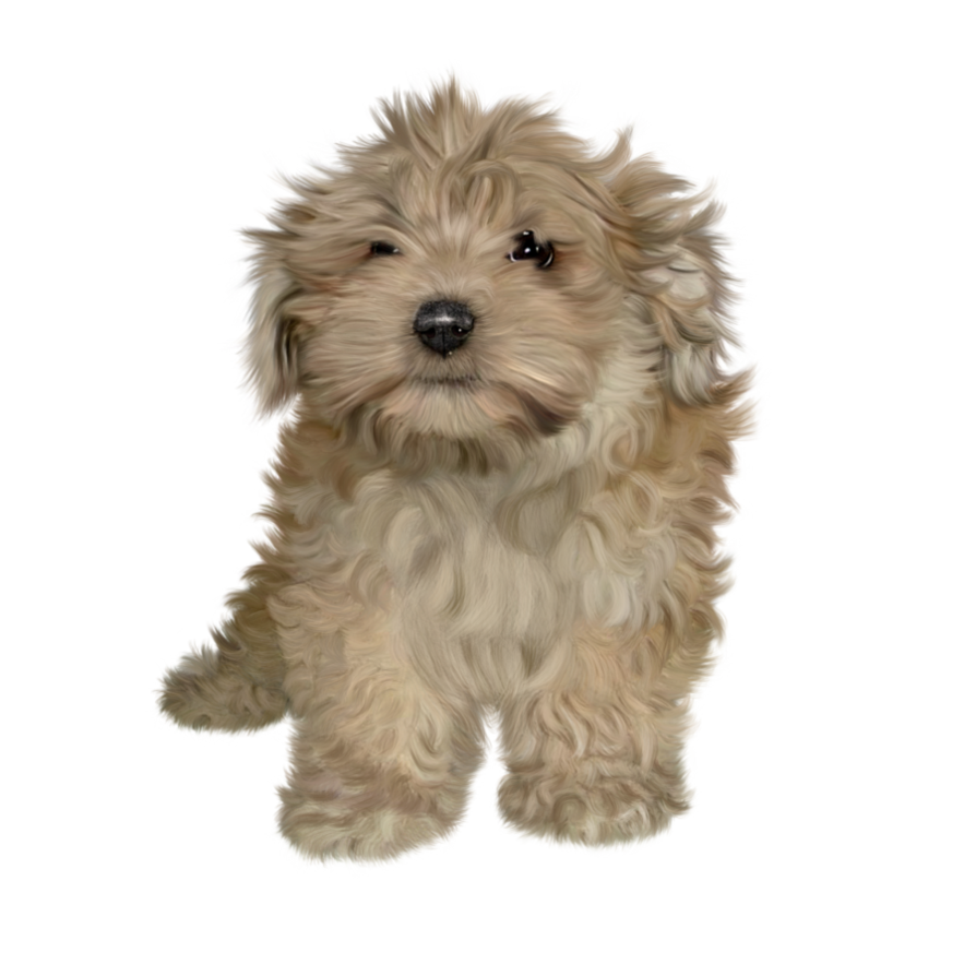 PNG Puppy - 62252