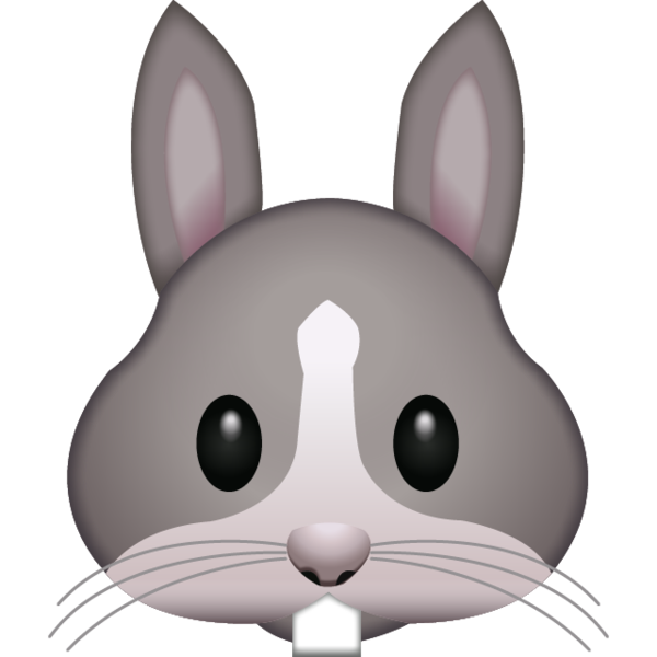 PNG Rabbit Face-PlusPNG.com-600 - PNG Rabbit Face