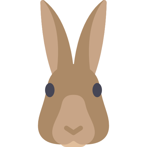 PNG SVG MORE · Face PlusPng.com  - PNG Rabbit Face