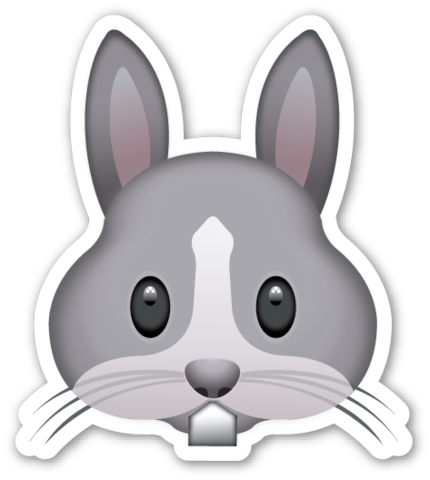 Rabbit Face - PNG Rabbit Face
