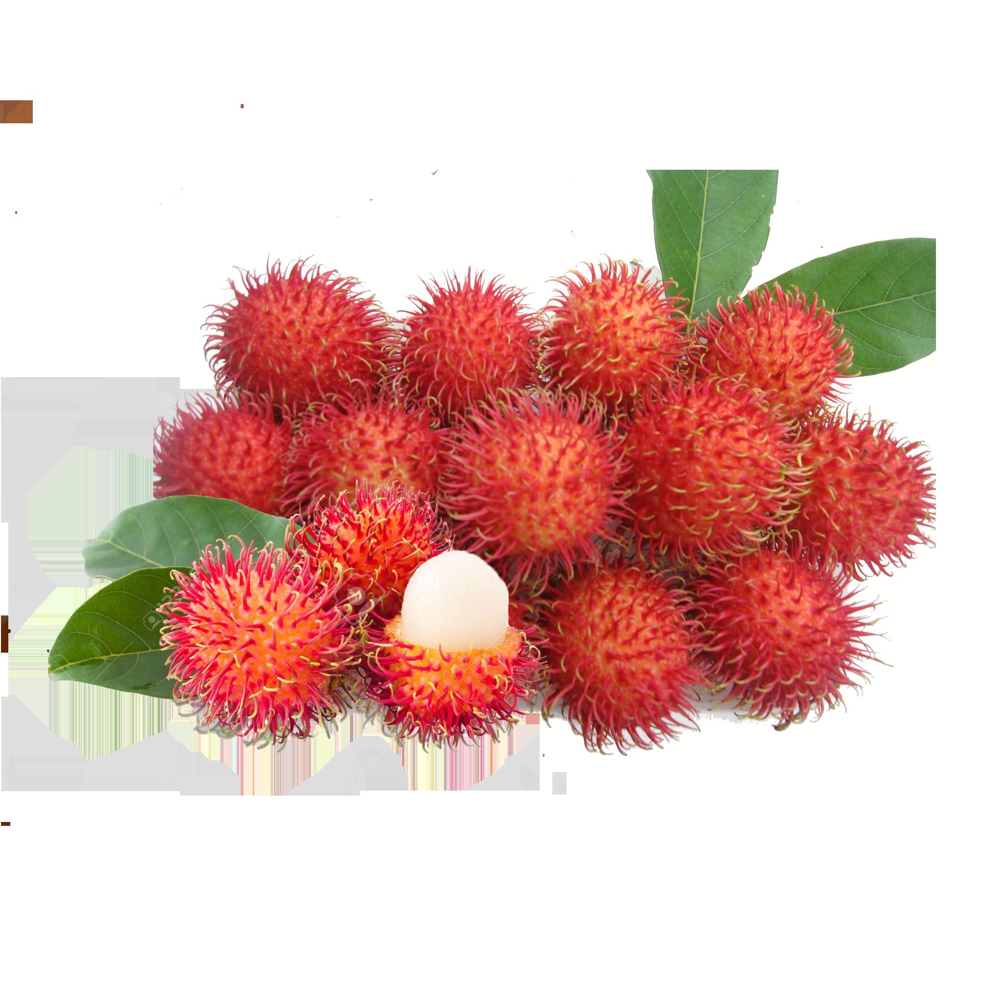 Rambutan Fruit - PNG Rambutan