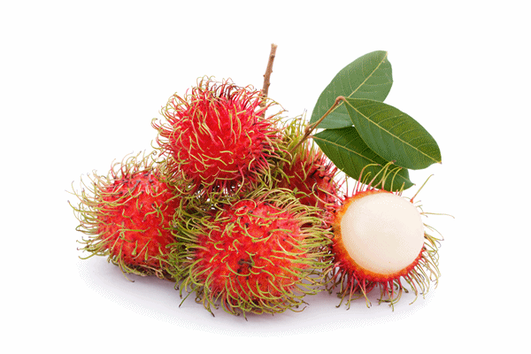 RAMBUTAN FRUITS - PNG Rambutan